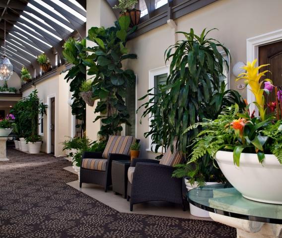 Hotel Vista Del Mar Courtyard Garden